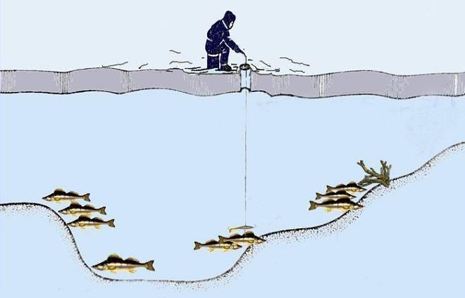 Ловля судака весной на спиннинг: в марте, апреле, мае