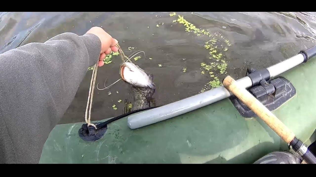 Ловля сома на квок – изготовление квока, снасти, техника ловли