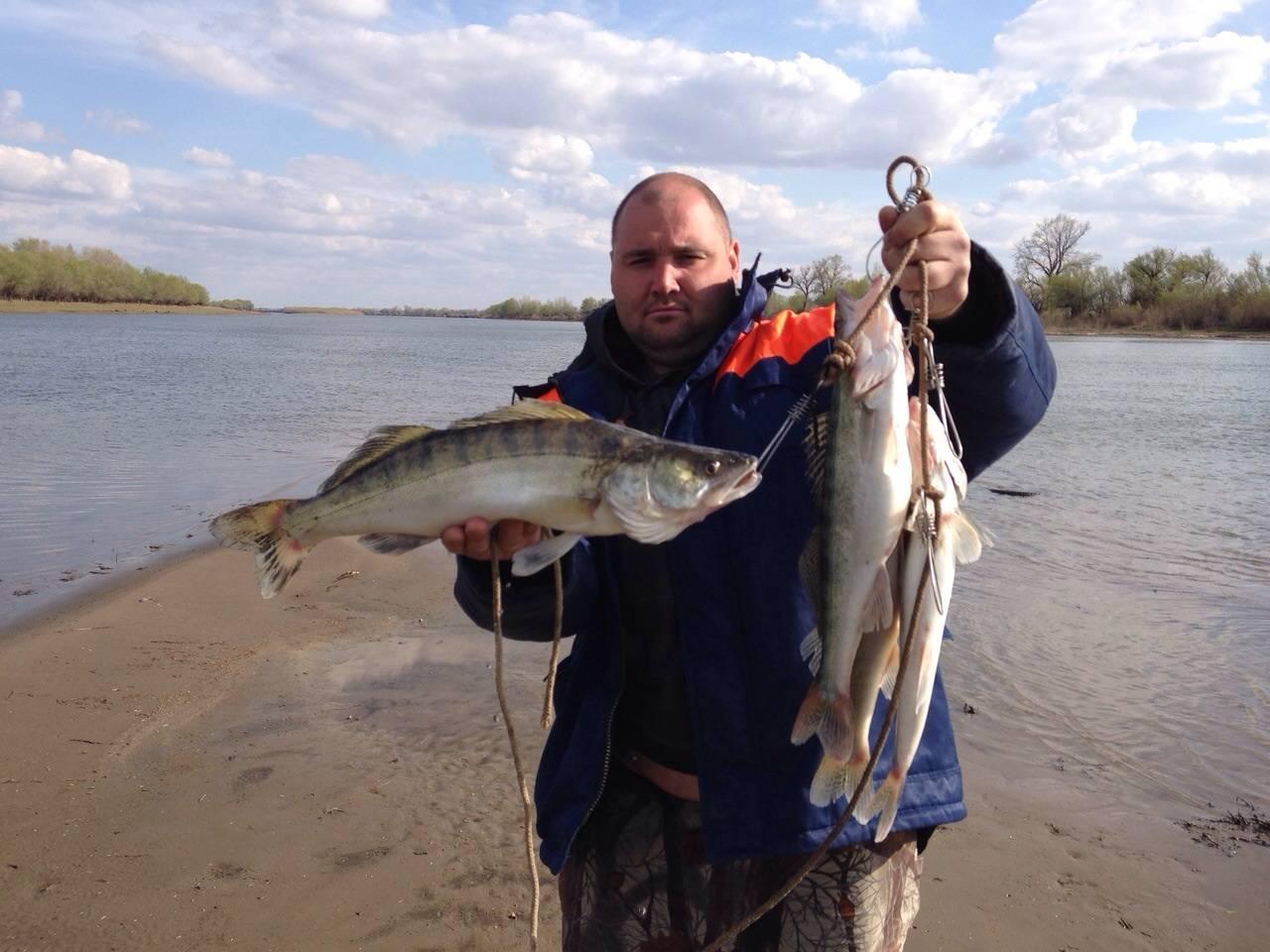 Рыбалка на нижней волге в апреле: где, кого и как ловить