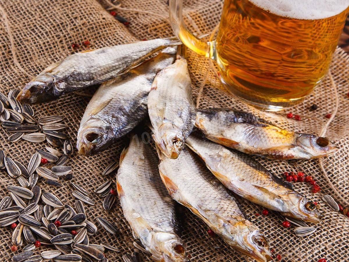 Рыба вобла: описание, особенности, пищевая ценность и отзывы