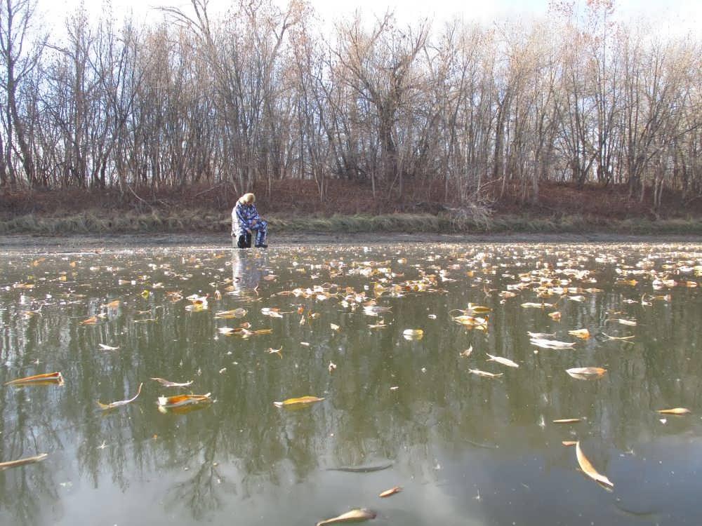 Зимняя рыбалка по первому льду - советы начинающим