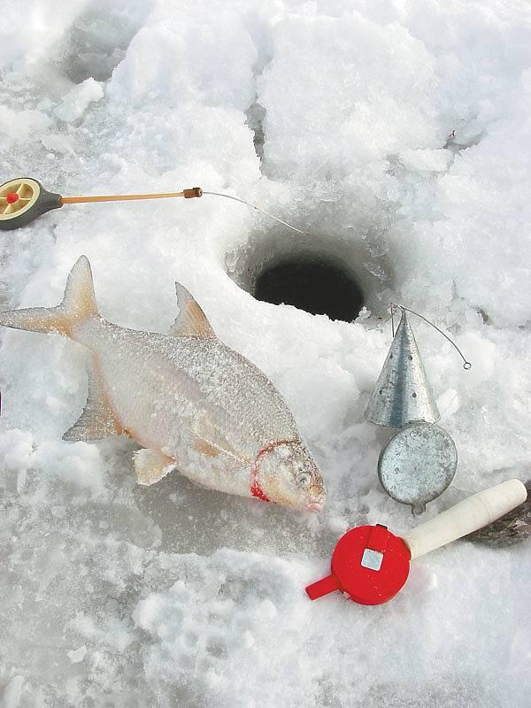 Зимняя рыбалка | ловля рыбы зимой - рыбколов