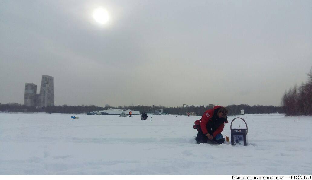 Химкинское водохранилище в москве: рыбалка, пляж, на карте, фото, отзывы