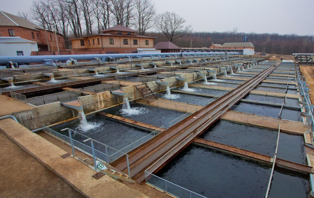 Искусственное разведение рыб в водоемах как бизнес — cельхозпортал