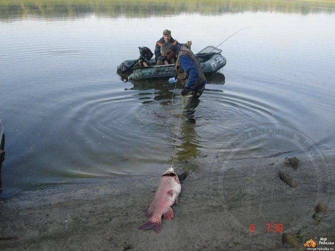 Ловля рыбы в иртыше