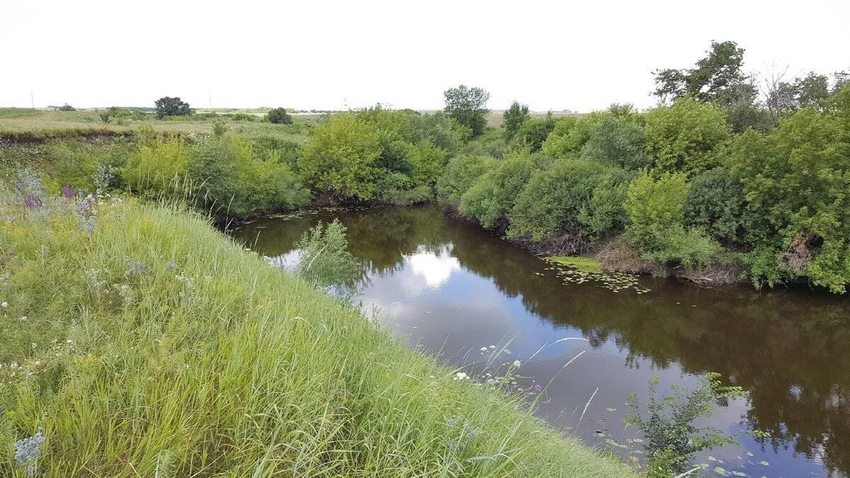 Река обва (пермский край) на карте от истока до устья, описание, обитатели речных вод