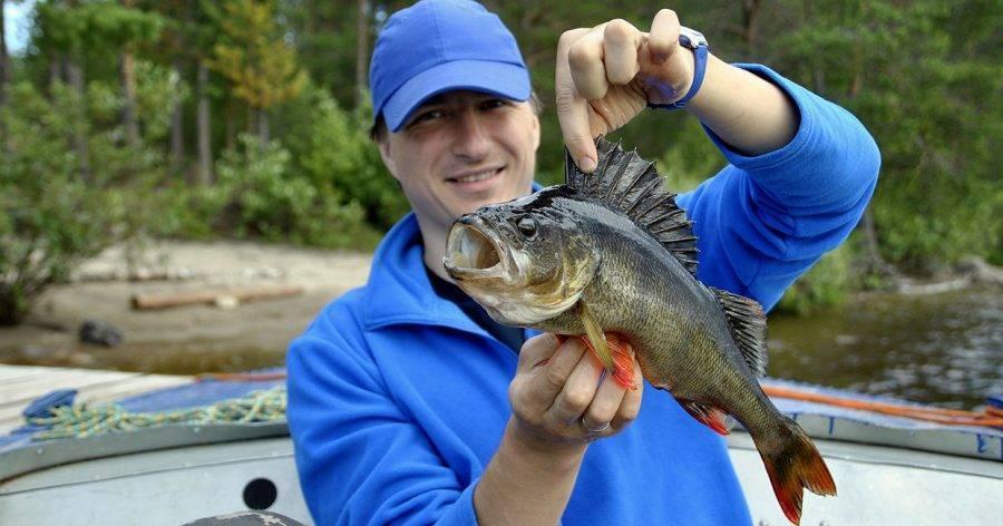 Рыбалка в карелии дикарем — что взять с собой?