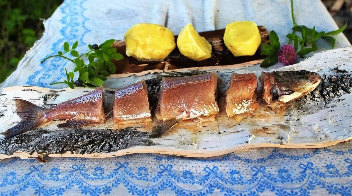 Как вымочить соленую рыбу — как убрать соль из рыбы в домашних условиях