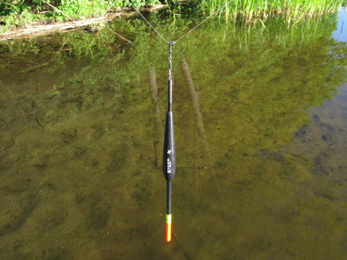 Ловля карася на поплавочную удочку: наживка, снасти и техника