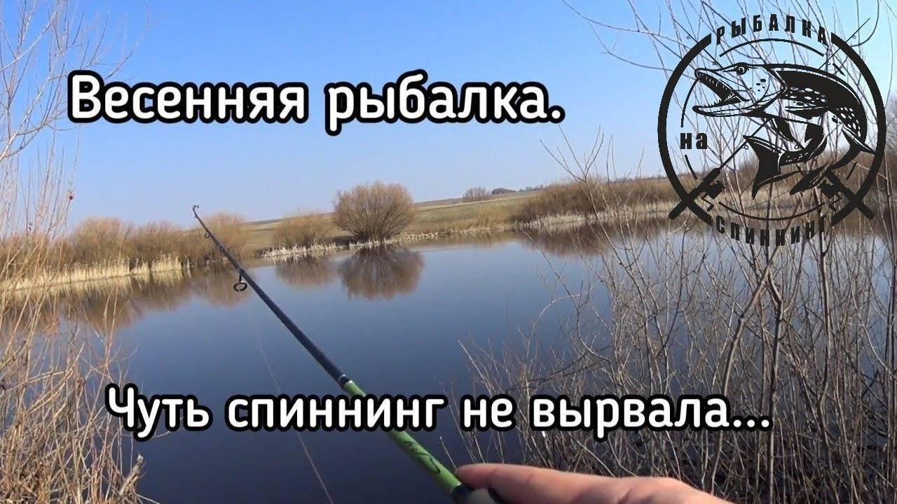 ᐉ береговая спиннинговая ловля окуня весной – особенности тактики и выбора снастей - ✅ ribalka-snasti.ru