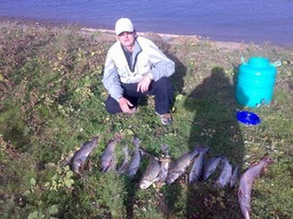 Уфа - календарь рыболова. рыбалка в уфе, график клёва рыбы.