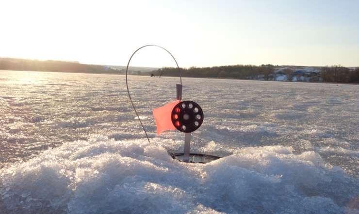 Ловля щуки на жерлицы зимой: снасти, тактика, видео