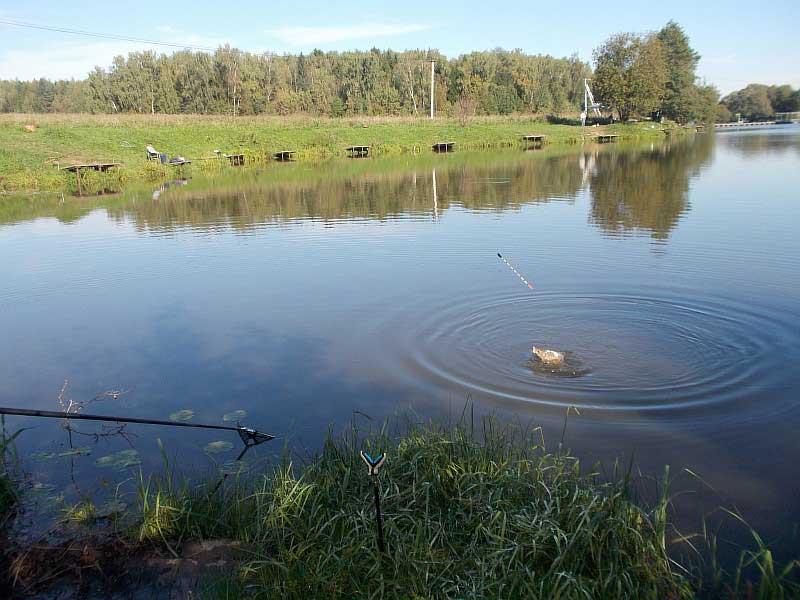 Рыбалка стрелецкий ручей - все про рыбалку