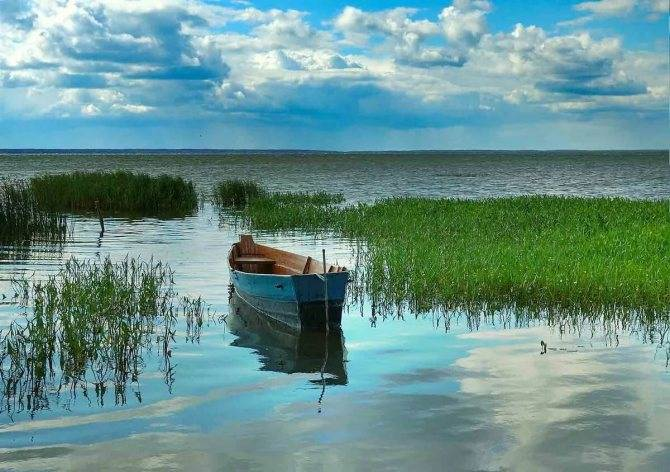 Рыбалка на маныче сегодня 2020: выбор мест, отзывы