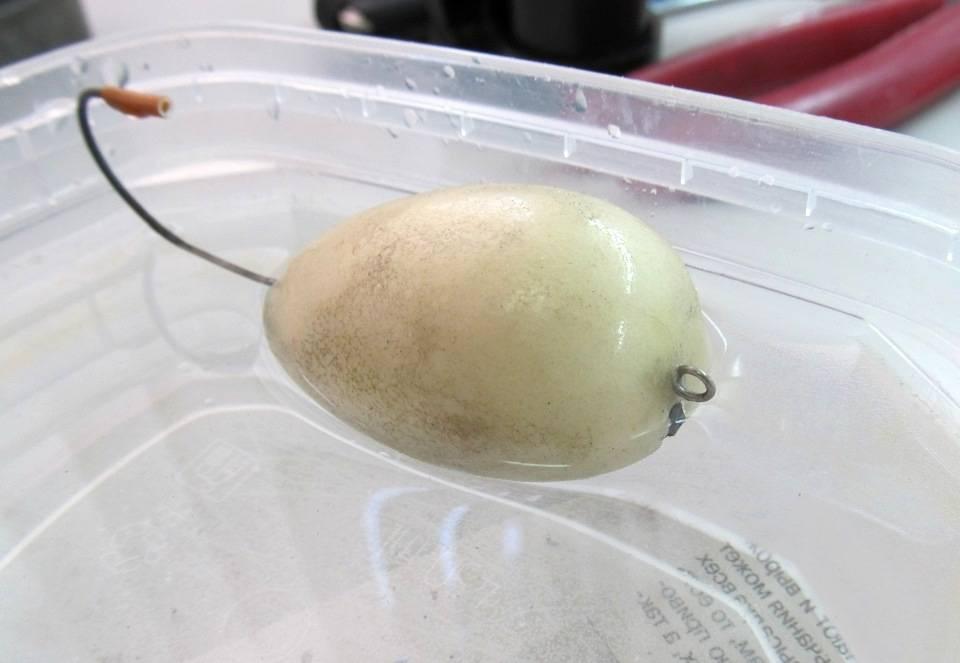 Хорватское яйцо своими руками с указаниями параметров: как правильно сделать