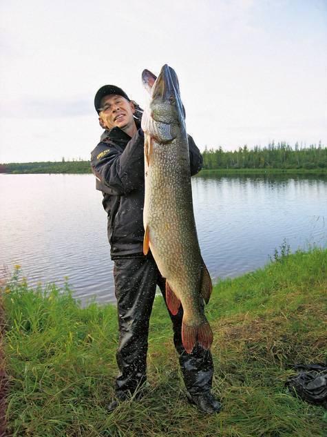 Рыбалка в смоленской области: описание водоемов, виды рыб, советы начинающим