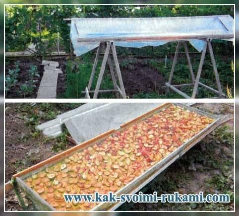 Как правильно сделать сушилку для овощей и фруктов своими руками