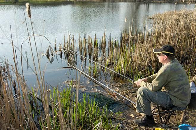Особенности ловли карася весной – правильная тактика и снасти