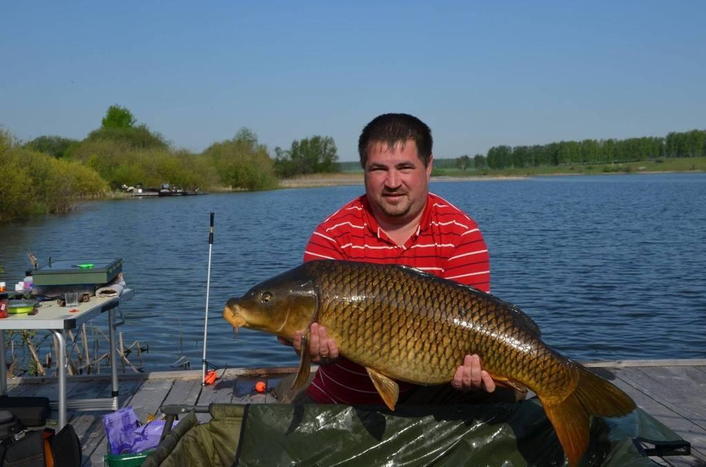 Рыбалка на оке в серпуховском районе — самые рыбные места