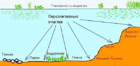 Поиск рыбы. как найти рыбу на реке? где не стоит искать рыбу?
