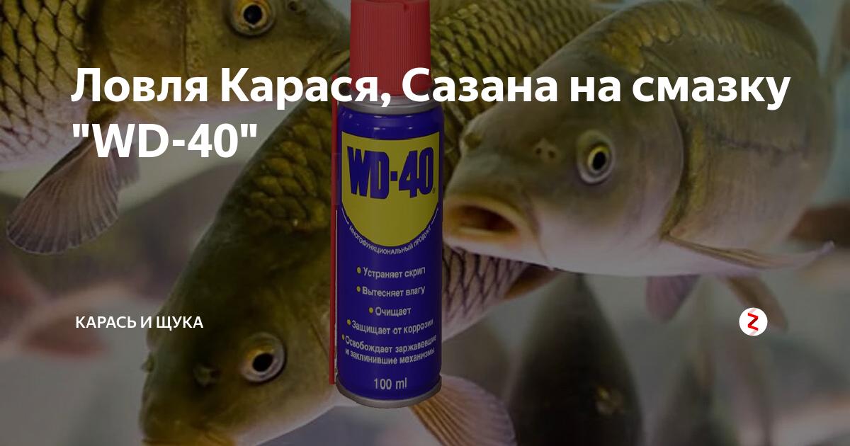 Смазка силиконовая: где применяется? - wd-40 ru
