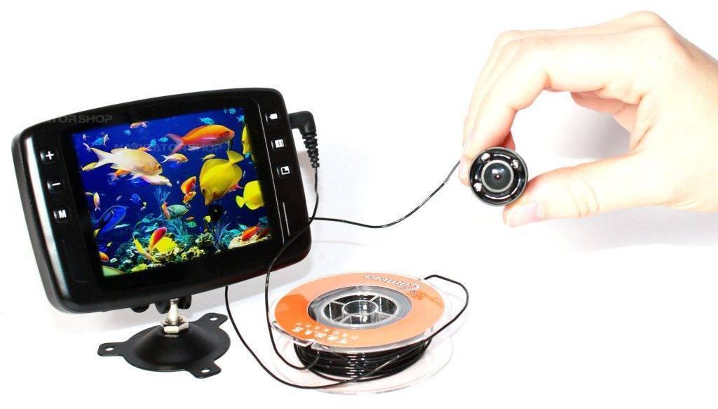Камера для подводной съемки: принцип работы и критерии выбора, популярные модели и правила использования