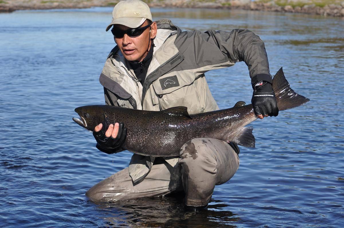 Жители карелии боятся есть рыбу после взрыва под северодвинском | столица на онего