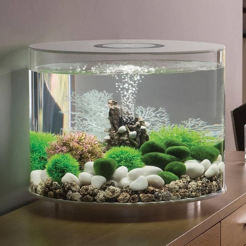 Какой грунт лучше для аквариума и растений: натуральный, нейтральный, питательный или искусственный, как правильно выбрать, какой вид субстрата нужен рыбкам