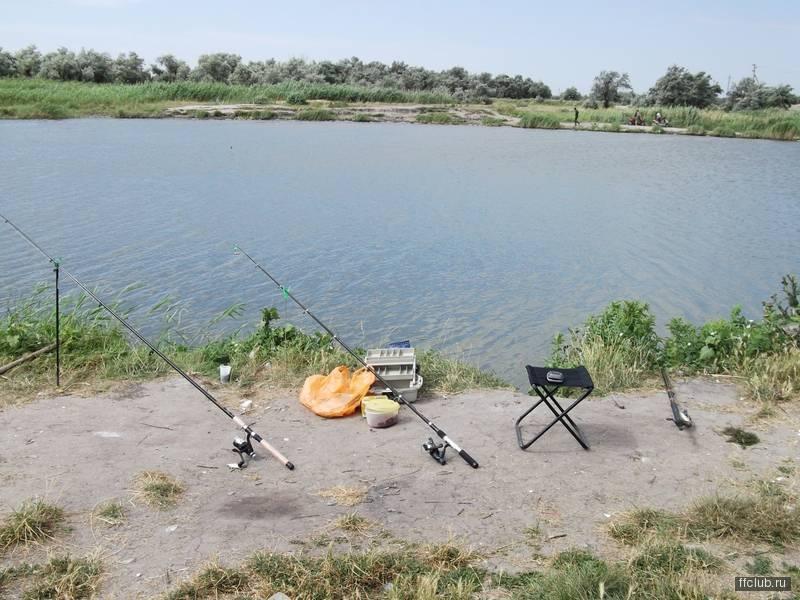 Рыбалка на Дону в Ростовской области