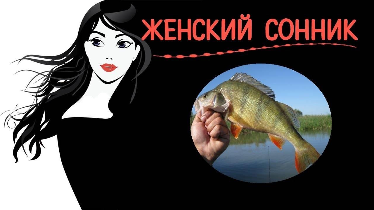 К чему снится рыба: живая, мороженная, гнилая, что означает во сне ловить щуку, сома в мутной воде, чистить чешую, кости