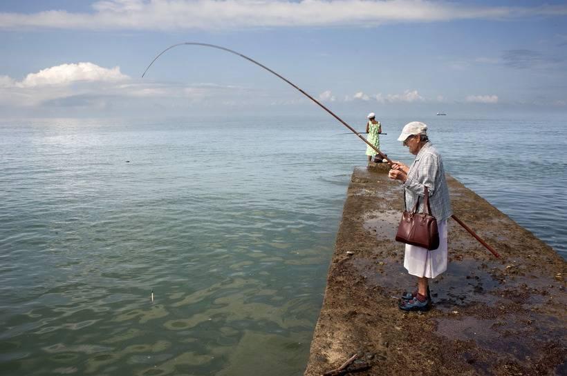 Рыбалка в сочи: кого и где можно поймать в сочи на озерах, прудах и запрудах