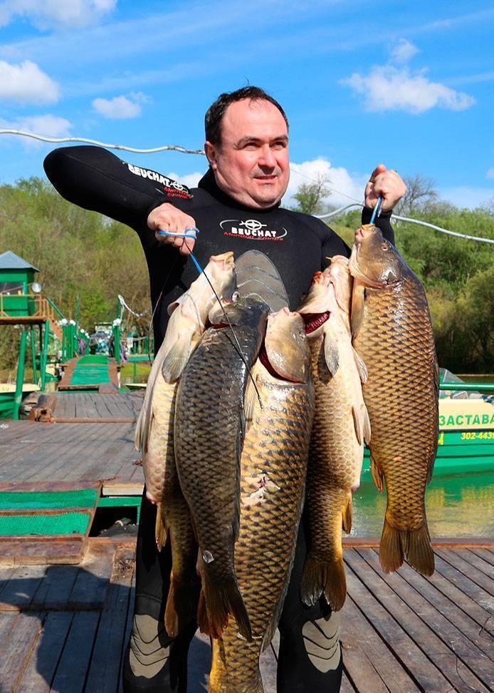 Рыбалка дикарем в астрахани и астраханской области: куда поехать? никольское и харабали, селитренное и другие рыболовные места