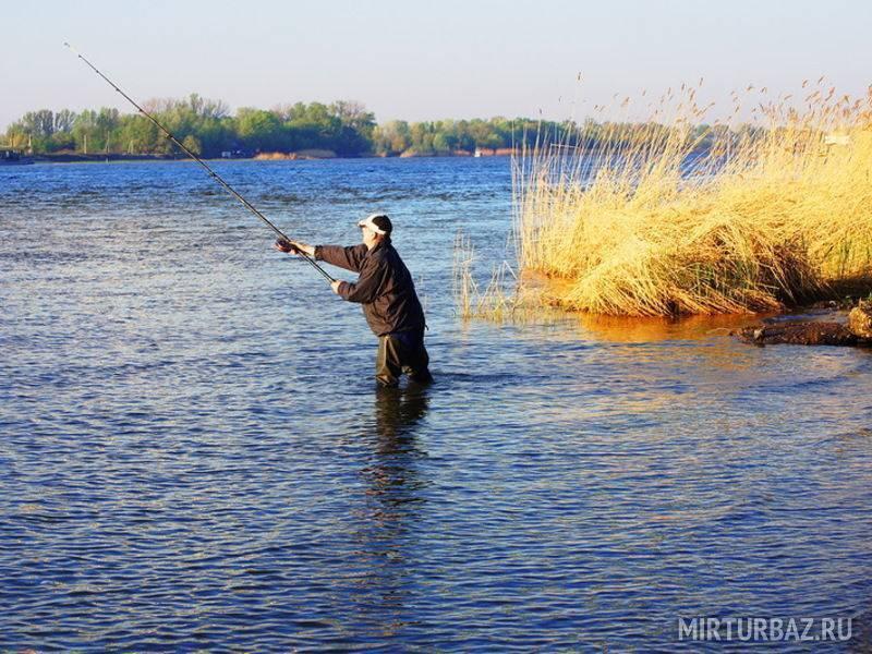 Рыбалка в ростовской области: с берега, платные пруды