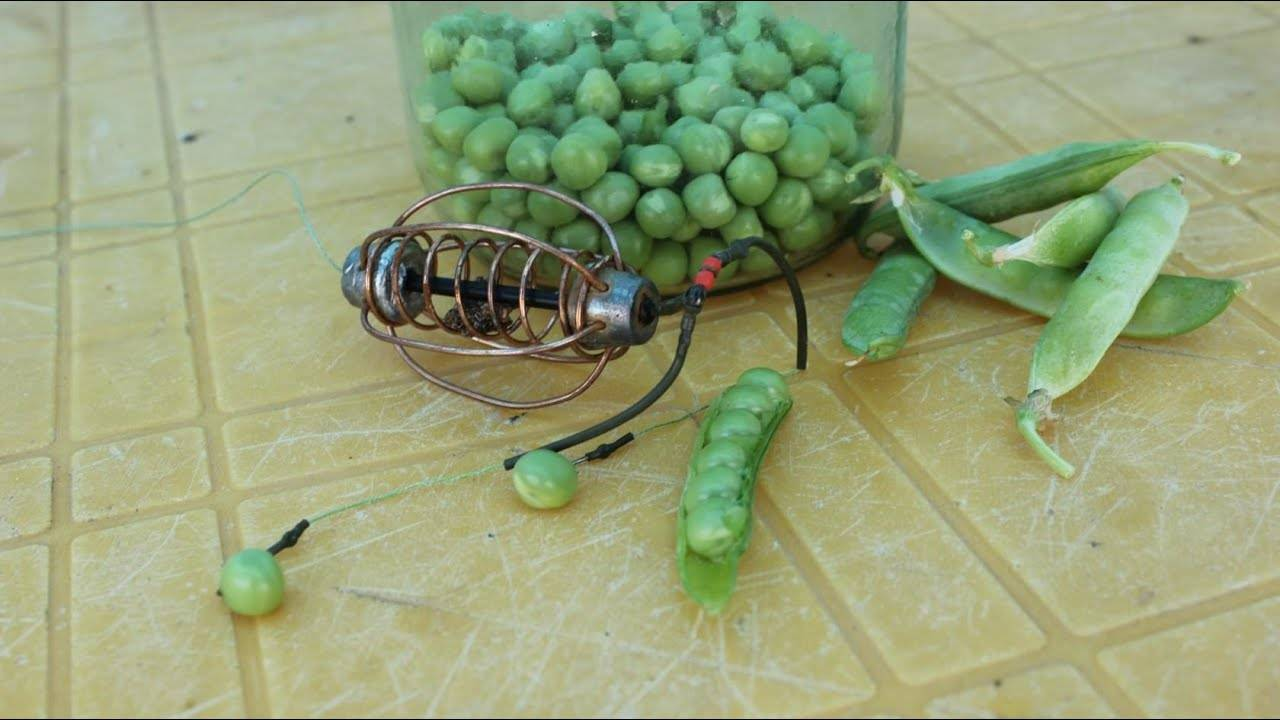 Как варить горох для рыбалки: рецепты приготовления, сколько запаривать, как насадить на крючок?