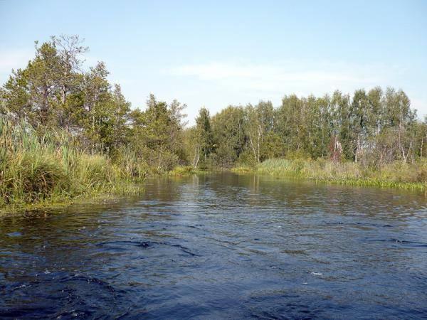 Достопримечательности телецкого озера: 20 мест, куда поехать на экскурсию и отдых