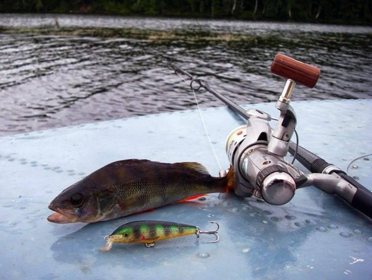 Несколько способов для удачной ловли рыбы без удочки