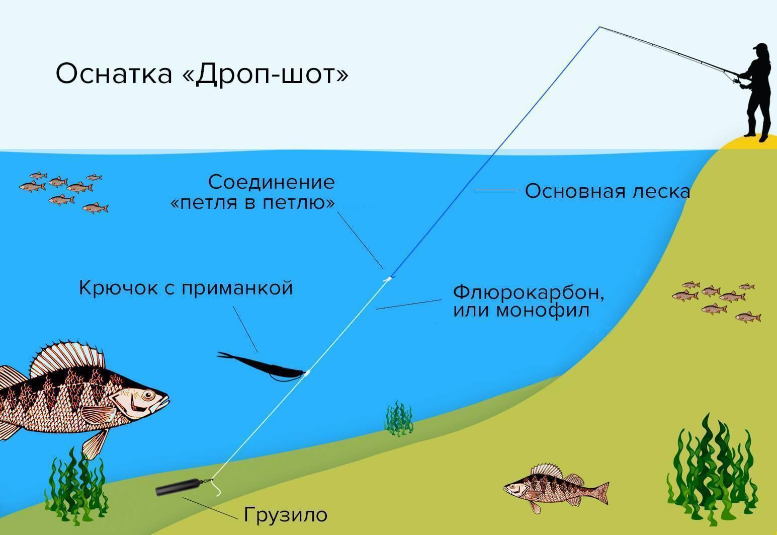 Дроп-шот – особенности оснастки, изготовление и техника ловли - читайте на сatcher.fish