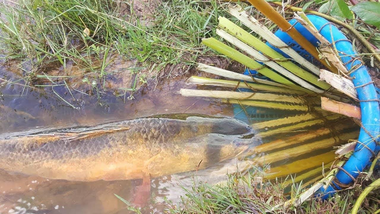 Кубарь для ловли рыбы своими руками