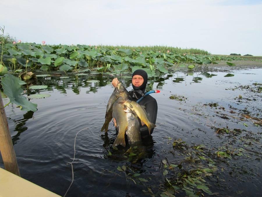 Рыболовные туры в астрахань | рыболовные базы нижней волги и её дельты: стоимость проживания, цены услуг | как выбрать лучшую базу отдыха в астрахани