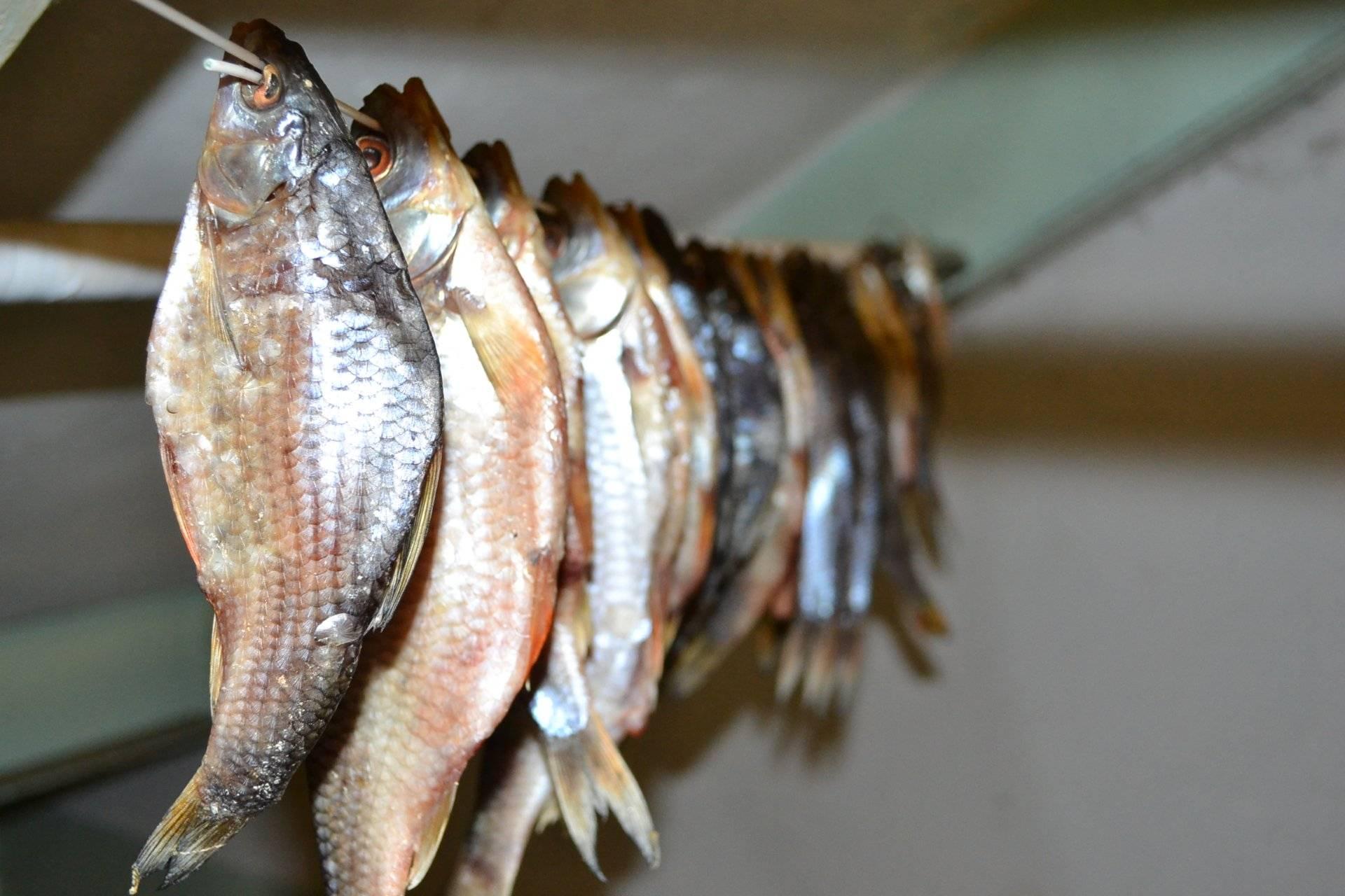 Острая вяленая рыба с перцем - отличная закуска к пиву и не только