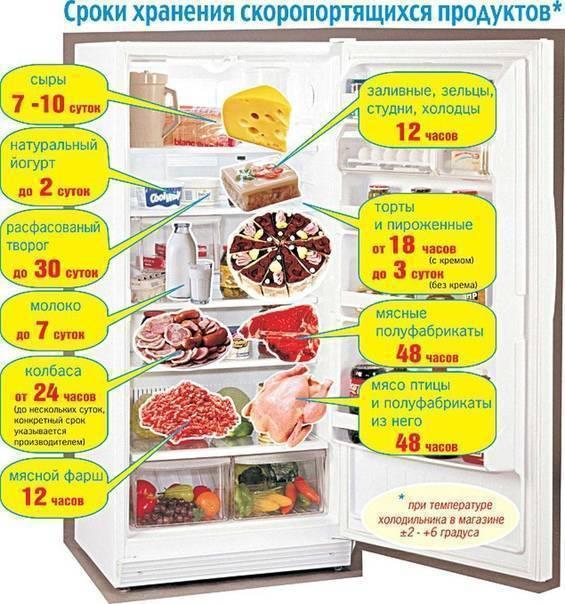 Срок и температура хранения замороженной рыбы в морозильной камере