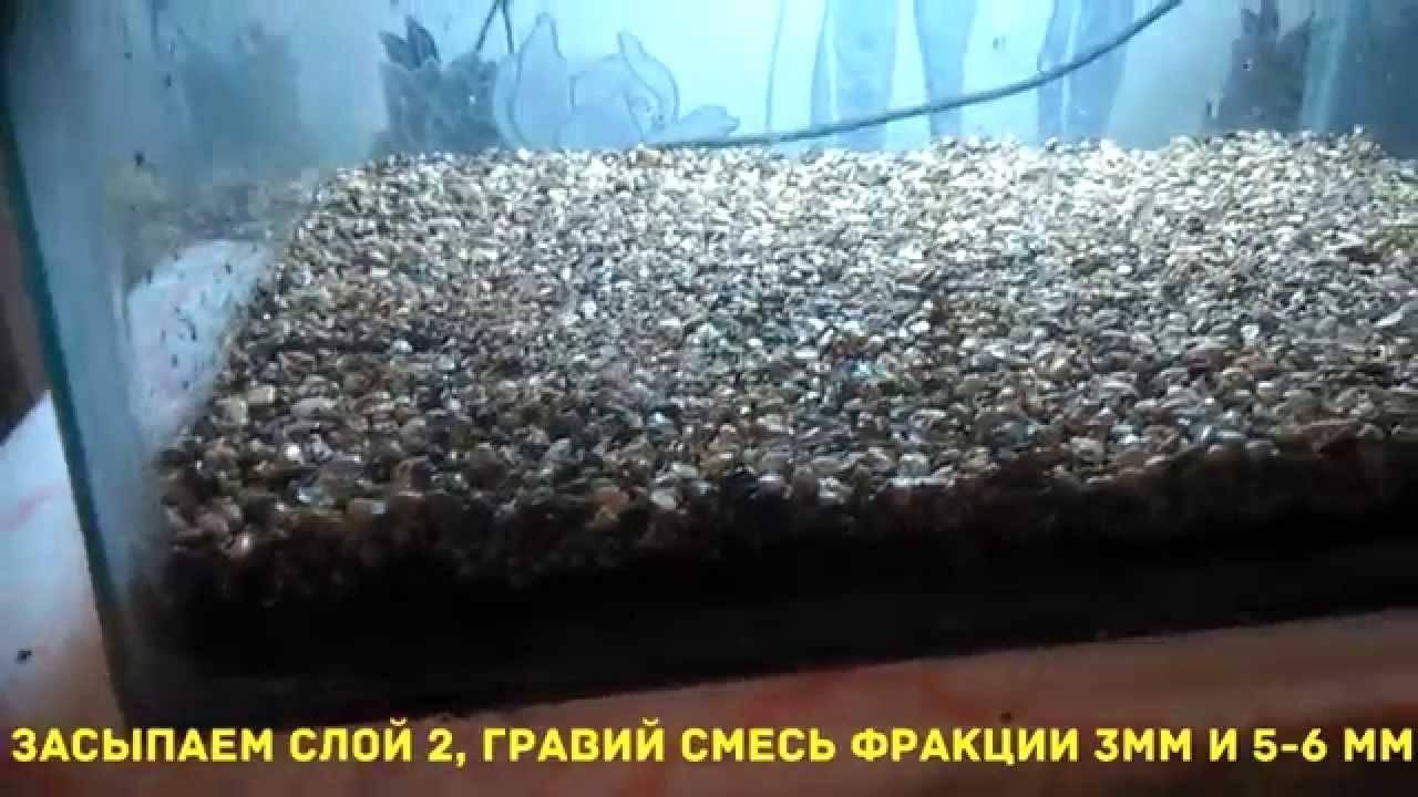 В какой грунт сажать аквариумные растения: правила выбора