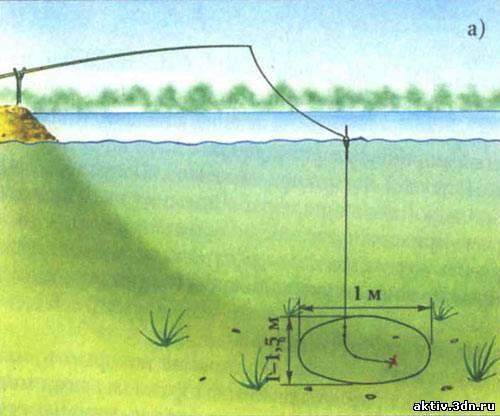Ловля карпа на поплавочную удочку: снасти и оснастки, выбор места и времени ловли, наживки и прикормка