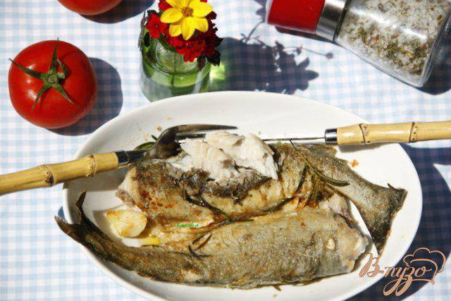 Сайда рыба. Образ жизни и среда обитания рыбы сайды