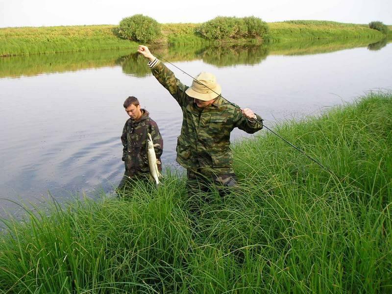 Платная рыбалка: топ-10 лучших мест в саратове и области