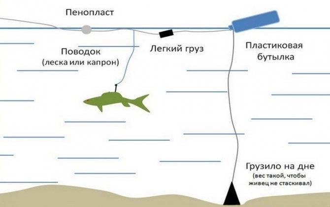 Аттрактант для рыбалки своими руками: описание, особенности и отзывы. аттрактант для зимней рыбалки