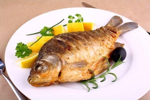 Польза и вред налима: преимущества рыбы, состав, свойства и описание мест обитания (90 фото и видео)