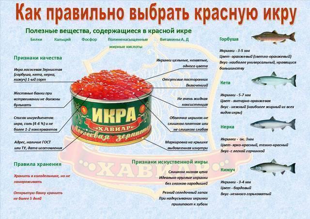 Какую рыбу лучше и полезнее кушать навагу или минтай? | польза и вред