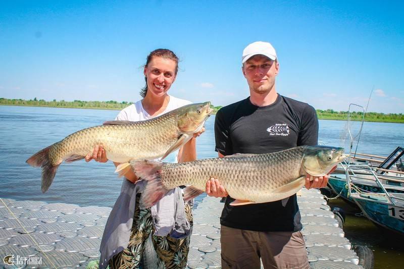 Рыбалка в окрестностях волгограда
