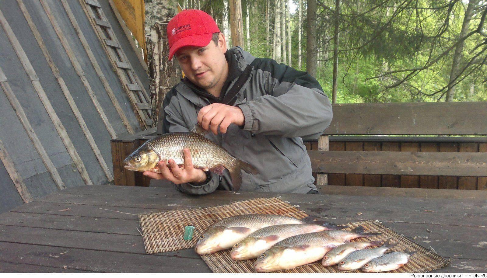 Инструкция бнк: где, когда и чем можно ловить рыбу в коми « бнк